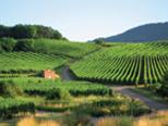 Region Dolina Loary – szlak turystyczny we Francji